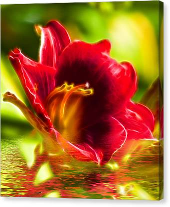 Floral Fractals And Floods Digital Art Canvas Print by David French