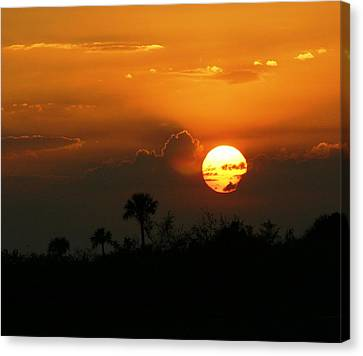 Canvas Print featuring the photograph Florida Sunset by Jeanne Andrews