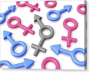 Gender Identity, Conceptual Artwork Canvas Print by David Mack