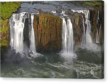 Natural Resources Canvas Print - Iguacu Falls by Keith Kapple