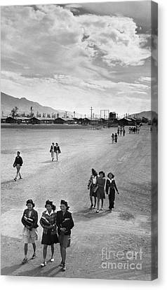 Japanese Internment, 1943 Canvas Print