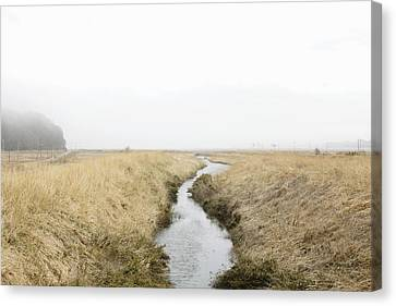Fukushima Canvas Print - Landscape After An Earthquake Disaster by Sot