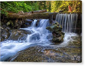 Lower Cascades Of Malachite Creek Canvas Print