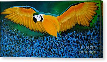 Macaw On The Rise Canvas Print