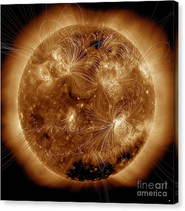 Magnetic Field Lines On The Sun Canvas Print by Stocktrek Images