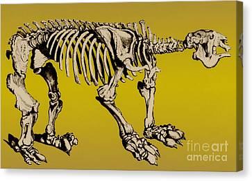 Megatherium, Extinct Ground Sloth Canvas Print by Science Source