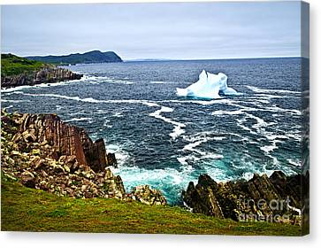 Melting Iceberg Canvas Print by Elena Elisseeva