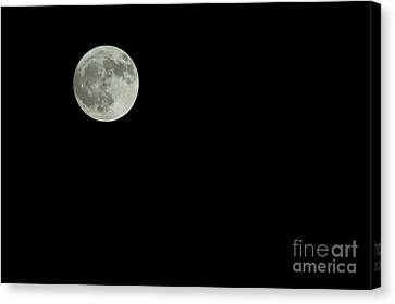 Moon Canvas Print by Odon Czintos