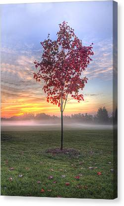 Morning Landscape Canvas Print by Nick Mares