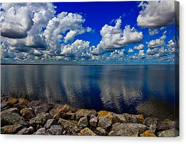 Mother Natures Beauty Canvas Print by Doug Long