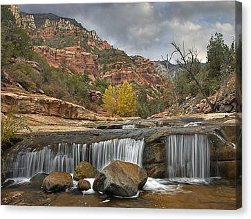 Oak Creek In Slide Rock State Park Canvas Print by Tim Fitzharris