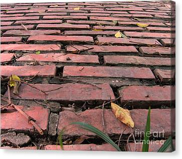 Burned Clay Canvas Print - Old Red Brick Road by Yali Shi