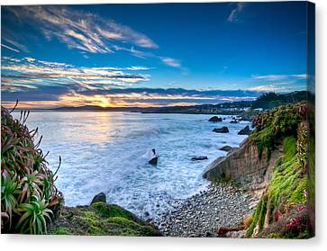 Pacific Grove Sunrise Canvas Print