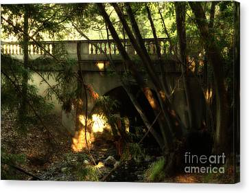 Pedestrian Bridge And Strawberry Creek  . 7d10132 Canvas Print by Wingsdomain Art and Photography