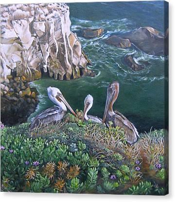 Pelican Point Canvas Print by Lorna Saiki