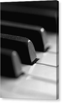 Piano Keys Canvas Print by Falko Follert