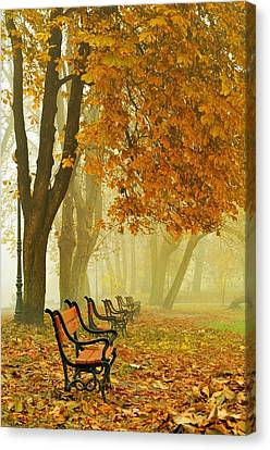 Red Benches In The Park Canvas Print by Jaroslaw Grudzinski