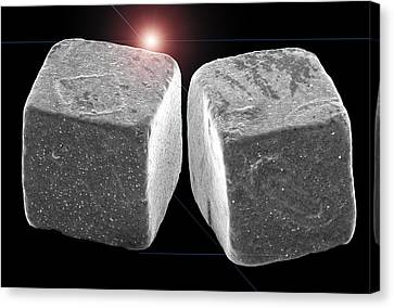 Sem Canvas Print - 2 Salt Crystals by Sheri  Neva