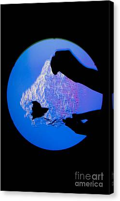 Schlieren Canvas Print - Schlieren Image Of A Balloon Popping by Ted Kinsman