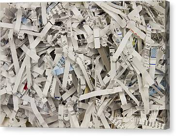 Shredded Paper Canvas Print