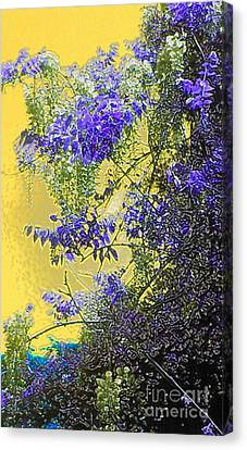 Canvas Print featuring the photograph Sun Setting On Wisteria by Holly Martinson