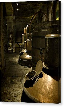 Tequilera No. 1 Canvas Print by Lynn Palmer