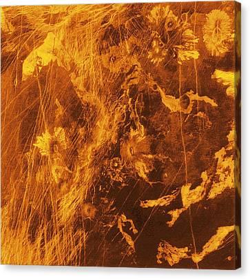 Venus, Synthetic Aperture Radar Map Canvas Print by Detlev Van Ravenswaay