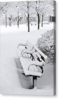 Park Benches Canvas Print - Winter Park by Elena Elisseeva