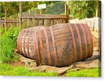 Fermentation Canvas Print - Wooden Barrels by Tom Gowanlock