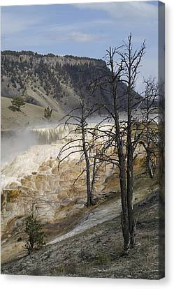 Yellowstone Nat'l Park Canvas Print by Henri Irizarri