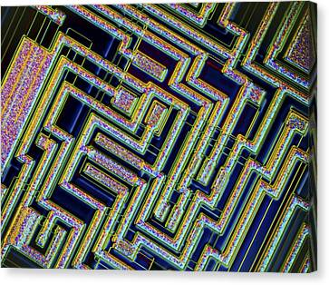 Microchip, Light Micrograph Canvas Print by Pasieka