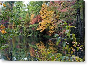Sugar Ridge State Fish And Wildlife Area Canvas Print by Jack R Brock