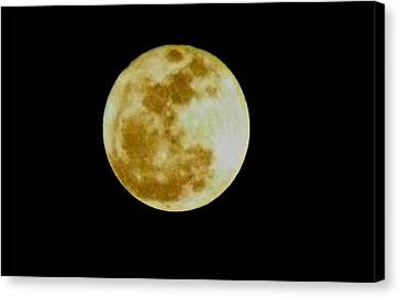 Canvas Print featuring the photograph 2011 Full Moon by Maria Urso