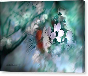 Canvas Print featuring the photograph 2012 Spring by Alfonso Garcia