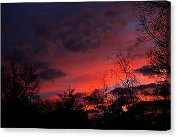 2012 Sunrise In My Back Yard Canvas Print