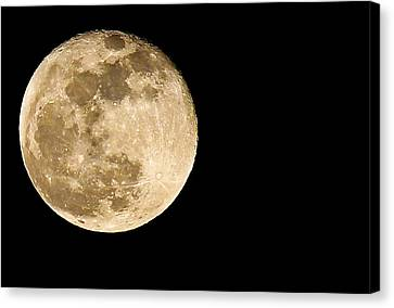 2012 Super Moon Canvas Print by Elizabeth Hart