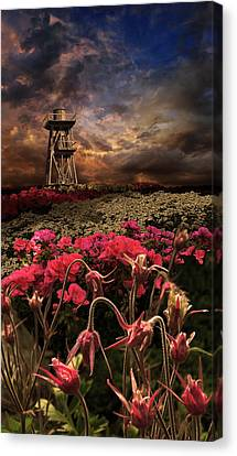 2258 Canvas Print by Peter Holme III