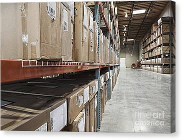 Boxes Of Material Stacked On Shelves Canvas Print by Jetta Productions, Inc