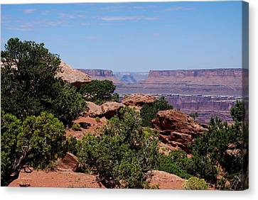 By The Canyon Canvas Print