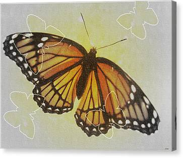 Designer Butterfly Collection Canvas Print by Debra     Vatalaro