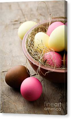 Easter Eggs Canvas Print by Kati Molin
