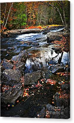 Fall Forest And River Landscape Canvas Print by Elena Elisseeva