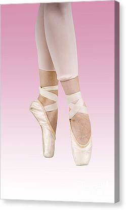 Female Dancer Canvas Print by Ilan Rosen