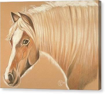 Halfie Canvas Print by Stephanie L Carr