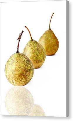 3 Pears Canvas Print by Darren Fisher