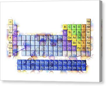 Periodic Table Canvas Print by Pasieka