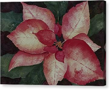 Poinsettias Canvas Print - Poinsettia by Sam Sidders