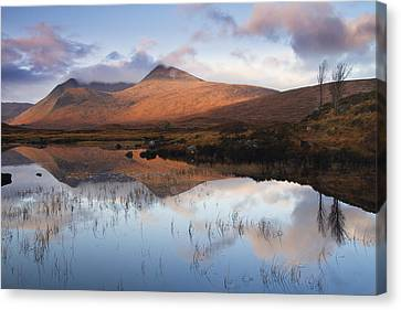 Rannoch Moor At Sunrise Canvas Print