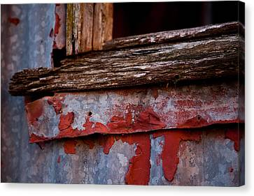 Red Shed Series Canvas Print