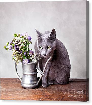 Watering Can Canvas Print - Russian Blue by Nailia Schwarz